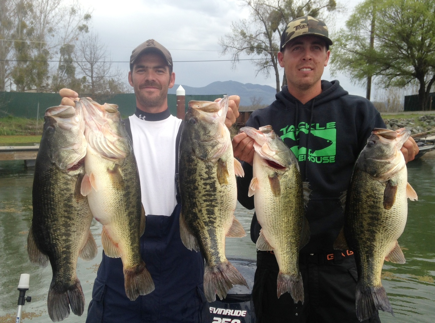 Clear lake big bass or how learn to fish tournaments for Clear lake fishing